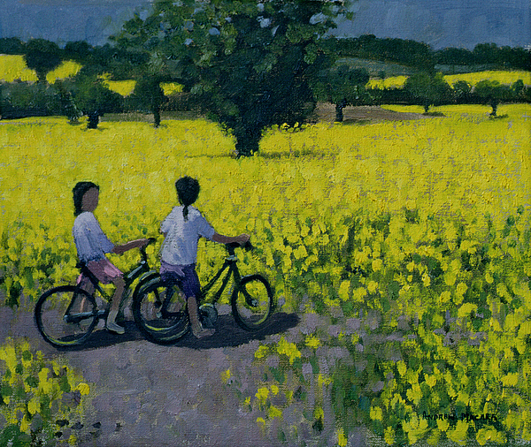 Rapeseed Painting - Yellow Field by Andrew Macara