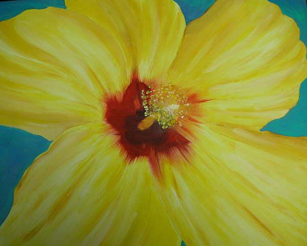 Flower Print - Yellow Hibiscus by Melinda Etzold