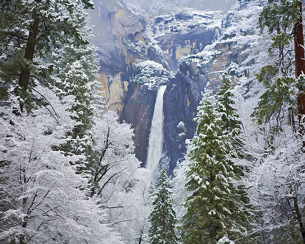 Gregory Scott - Yosemite Falls in the Snow