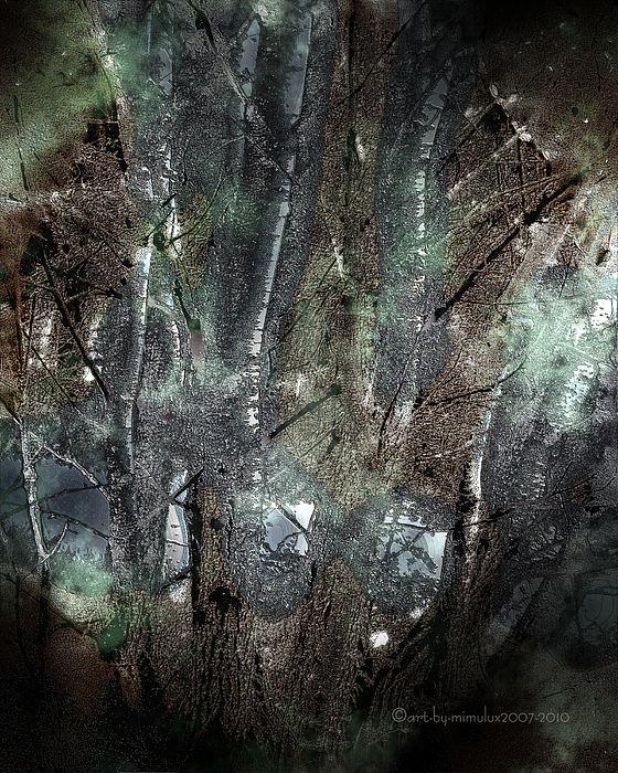 Zauberwald Photograph - Zauberwald Vollmondnacht Magic Forest Night Of The Full Moon by Mimulux patricia no No