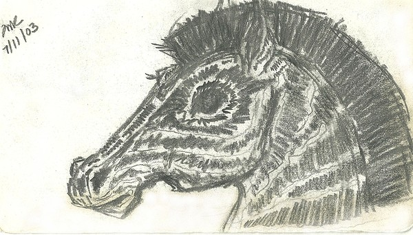 Pencil Drawing - Zebra-ish by Theresa Rawlings
