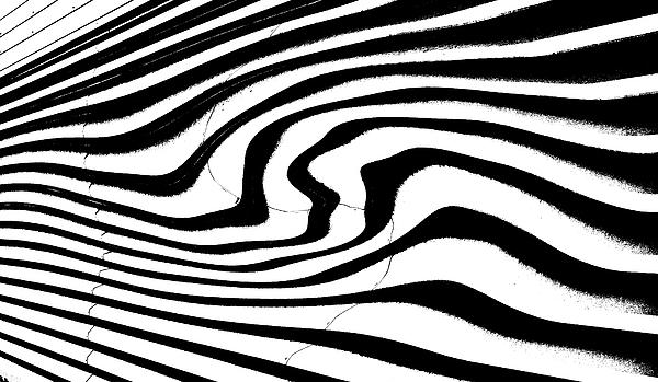 Arcs Digital Art - Zebra Pattern   Black And White by Mark Hendrickson