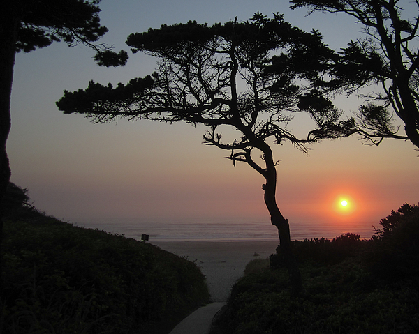 Oregon Photograph - Zen Sunset by HW Kateley