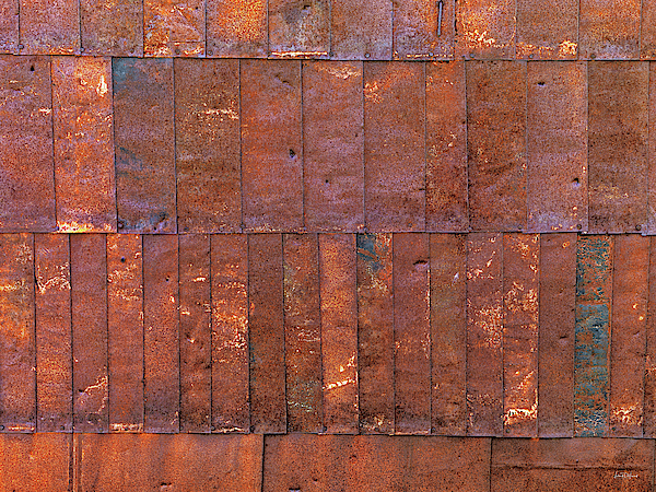 Bodie Photograph - Can Wall 2 by Leland D Howard