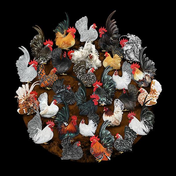 Sigrid Digital Art - Chabo Mosh Pit Round by Sigrid Van Dort