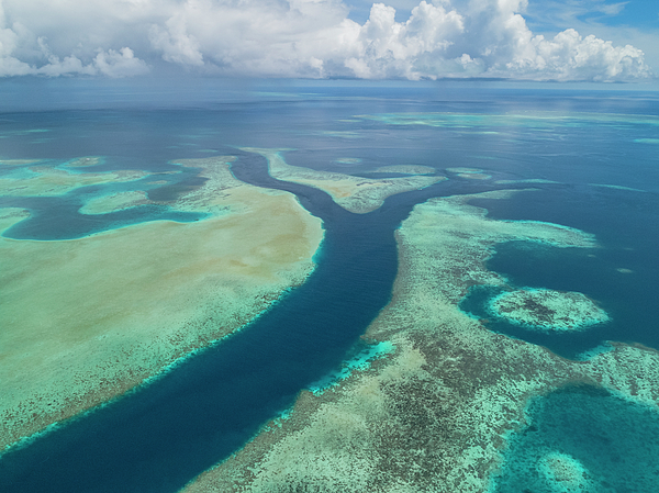 Rock Islands Photograph - Limestone Reefs And Channels by Richard Brooks/science Photo Library