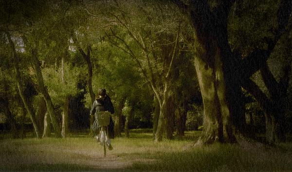 Secret Pathway Photograph by Naoaki Miyamoto