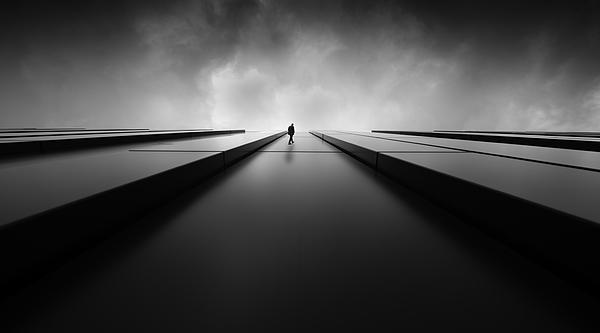 To The Light Photograph by Maurits De Groen