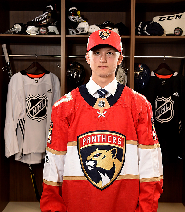 2017 NHL Draft - Portraits Photograph by Stacy Revere