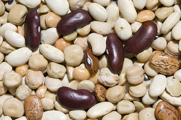 Beans and Pulses Photograph by Tim Graham