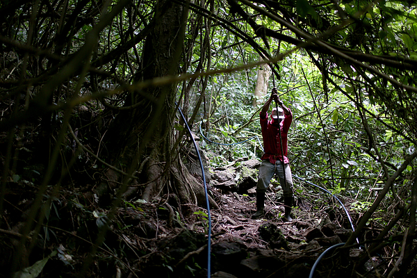 Costa Rica Uses 100 Percent Renewable Energy For A Record 75 Days Photograph by Joe Raedle