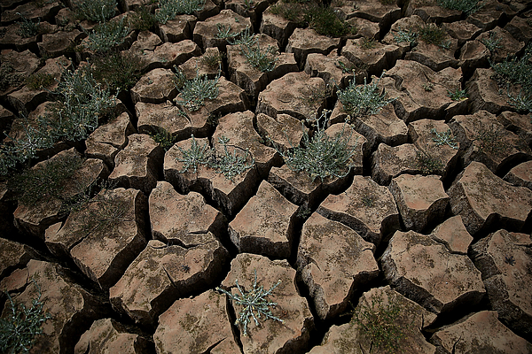 Drought-Stricken California Community Close To Running Out Of Water Photograph by Justin Sullivan