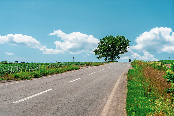 Empty Road Photograph by Liyao Xie