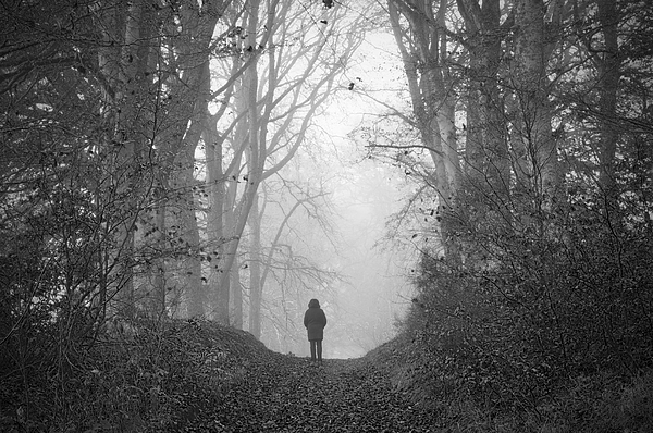 Figure in misty woodland Photograph by Northlightimages