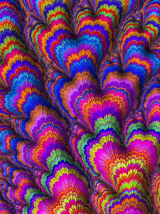 High resolution multi-colored fractal background, which patterns remind those of a flower bouquet. Photograph by Instants