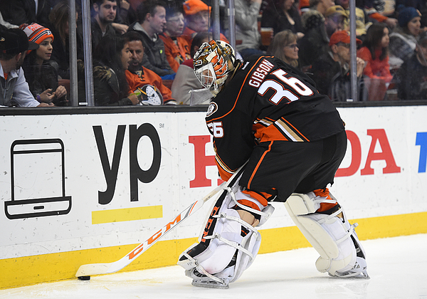 NHL: JAN 04 Red Wings at Ducks Photograph by Icon Sportswire