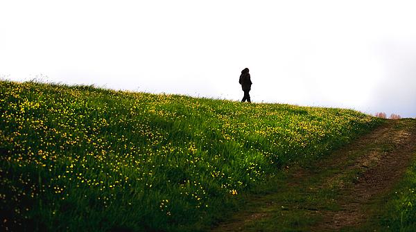Scenic View Of Field Against Sky Photograph by Paulien Tabak / EyeEm