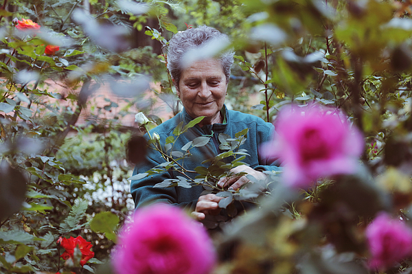 Woman With Flowers In The Garden Photograph by Tolgart