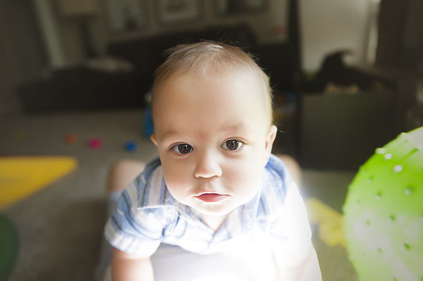12 Month Old Baby Stares At Camera Playing at Home Photograph by Jill Lehmann Photography