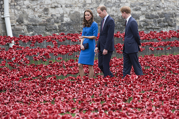 Duke And Duchess Of Cambridge And Prince Harry Visit Tower Of Londons Ceramic Poppy Field Photograph by Oli Scarff