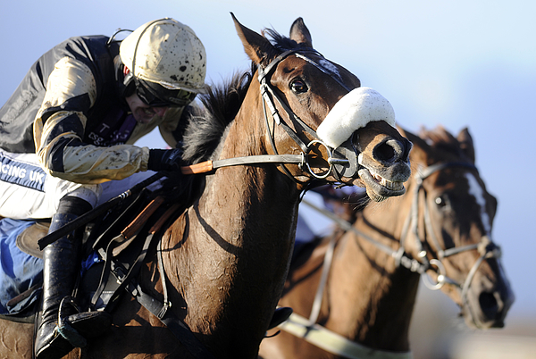 Wetherby Races Photograph by Alan Crowhurst
