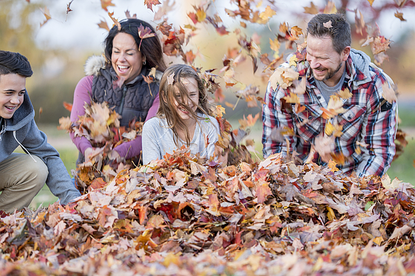 20180516_family In Fall_03 Photograph by FatCamera