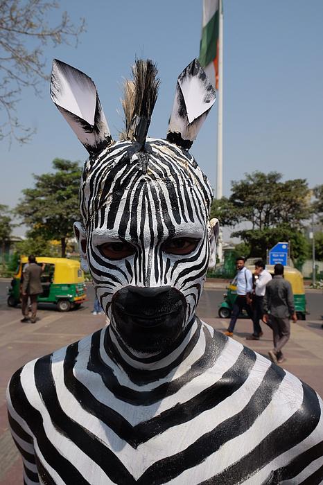 PETA Campaign in New Delhi Photograph by NurPhoto