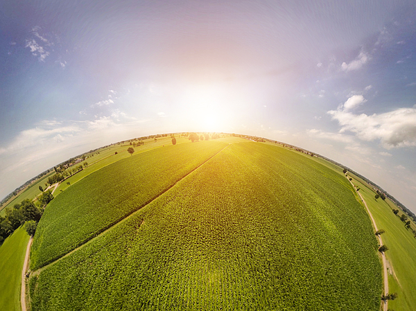 360° Panoramic View Of Corn Fields With Sunlight Photograph by PJPhoto69