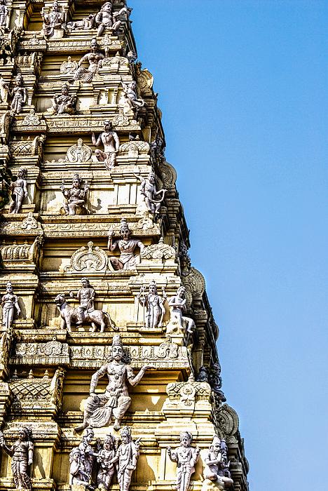 Bull Temple Photograph by Neha Gupta