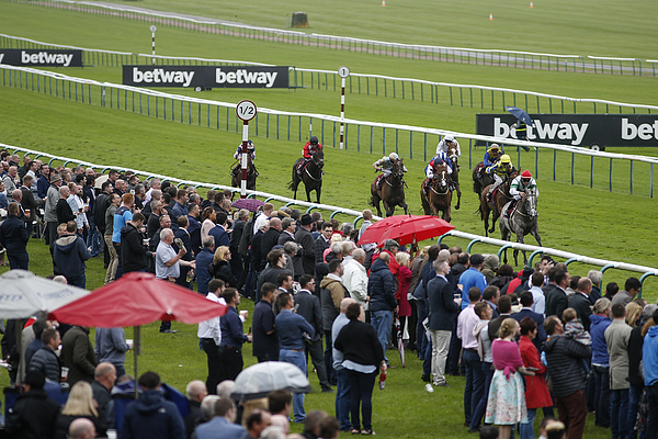 Haydock Races Photograph by Alan Crowhurst