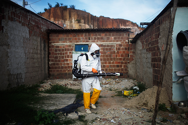 Brazil Faces New Health Epidemic As Mosquito-Borne Zika Virus Spreads Rapidly Photograph by Mario Tama