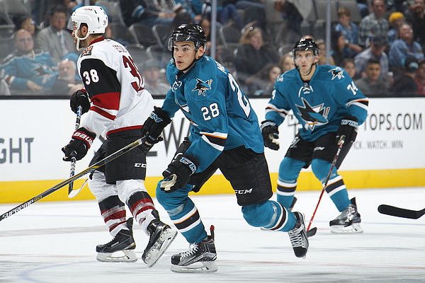 Arizona Coyotes v San Jose Sharks Photograph by Rocky W. Widner/NHL