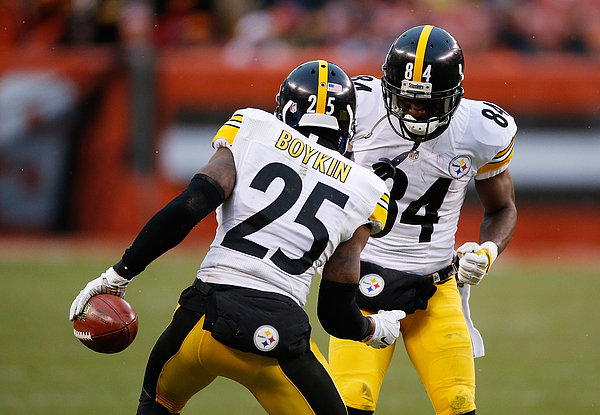 Pittsburgh Steelers v Cleveland Browns Photograph by Gregory Shamus