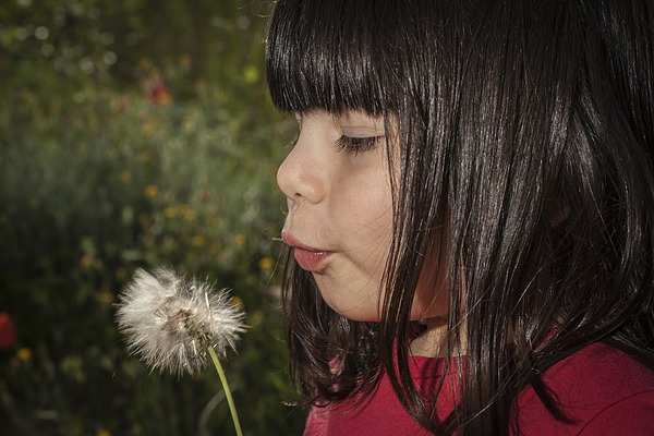 A girl and a dandelion. Photograph by Adriano Ficarelli
