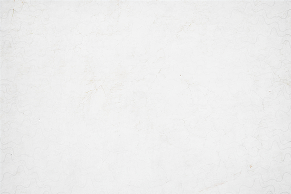 A horizontal vector illustration of a plain grunge effect blank white colored old blotched background Drawing by Desifoto