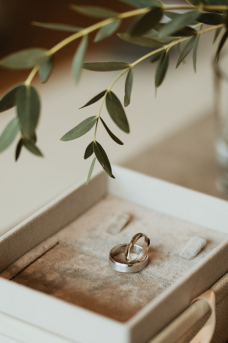 A pair of wedding rings in a box with a beautiful atmosphere. Photograph by Yasinemir
