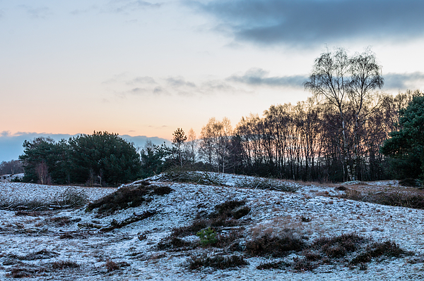 A Touch Of Winter Photograph by William Mevissen