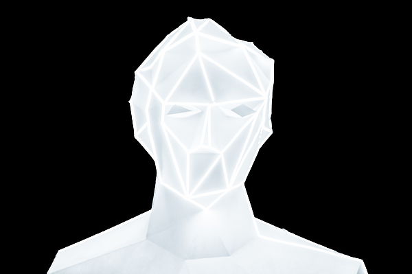 Abstract digital human Photograph by Liyao Xie