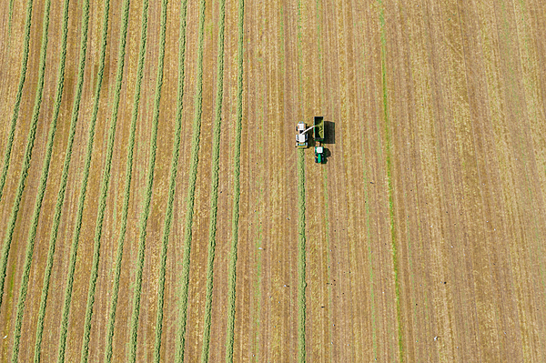 Aerial view of a harvester collecting cut grass Photograph by JohnFScott