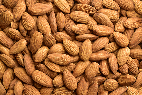 Almond, Backgrounds, Nut - Food, Textured, Harvesting Photograph by Utkarsh  Sharma