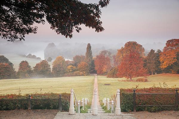 An autumn misty sunrise on Richmond hill. Photograph by Alex Saberi