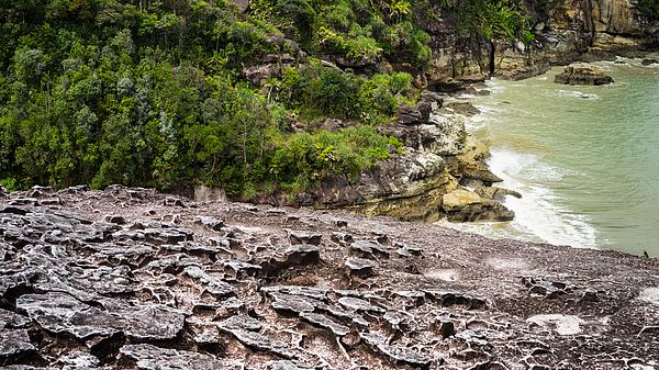 At The Peak Of Bako National Park, Malaysia. Photograph by Shaifulzamri