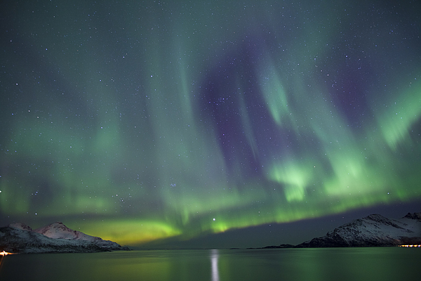 Aurora Borealis Northern Lights, Tromso, Norway Photograph by Tim Graham