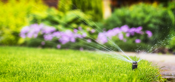 Automatic Sprinkler System Watering The Lawn Photograph by MaYcaL