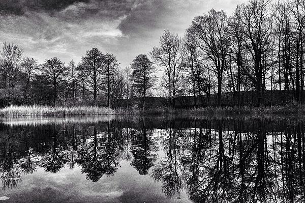 Bare Trees Reflecting In Still Lake Photograph by Michael Merkel / EyeEm