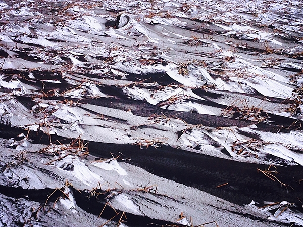 Barren Landscape Photograph by Sandra Eibler / EyeEm