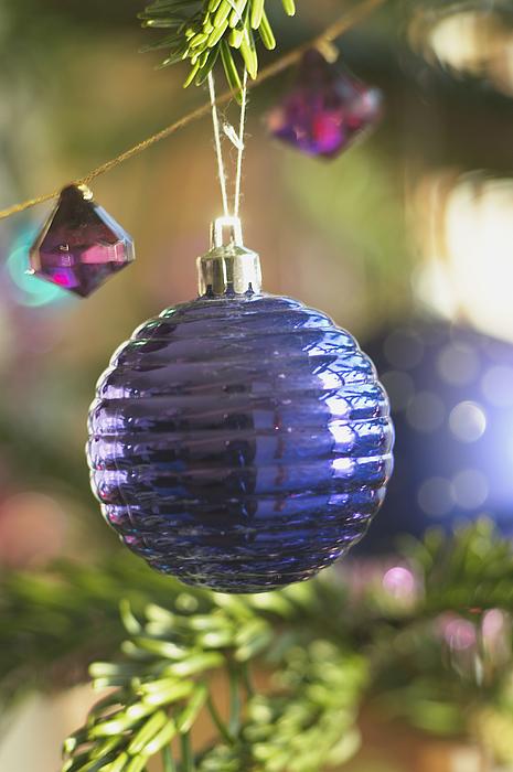Bauble on Christmas Tree Photograph by Heidi Coppock-Beard
