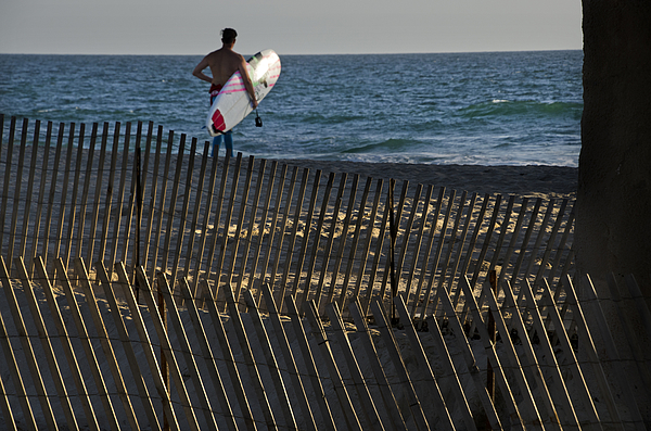 Beach Fence With Surfer Photograph by Mitch Diamond