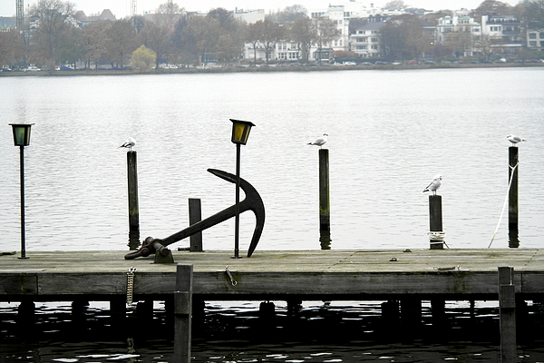 Big Anchor On Jetty Photograph by Alexander Nolting / EyeEm