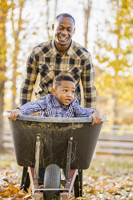Black father pushing son in wheelbarrow in autumn leaves Photograph by Mike Kemp